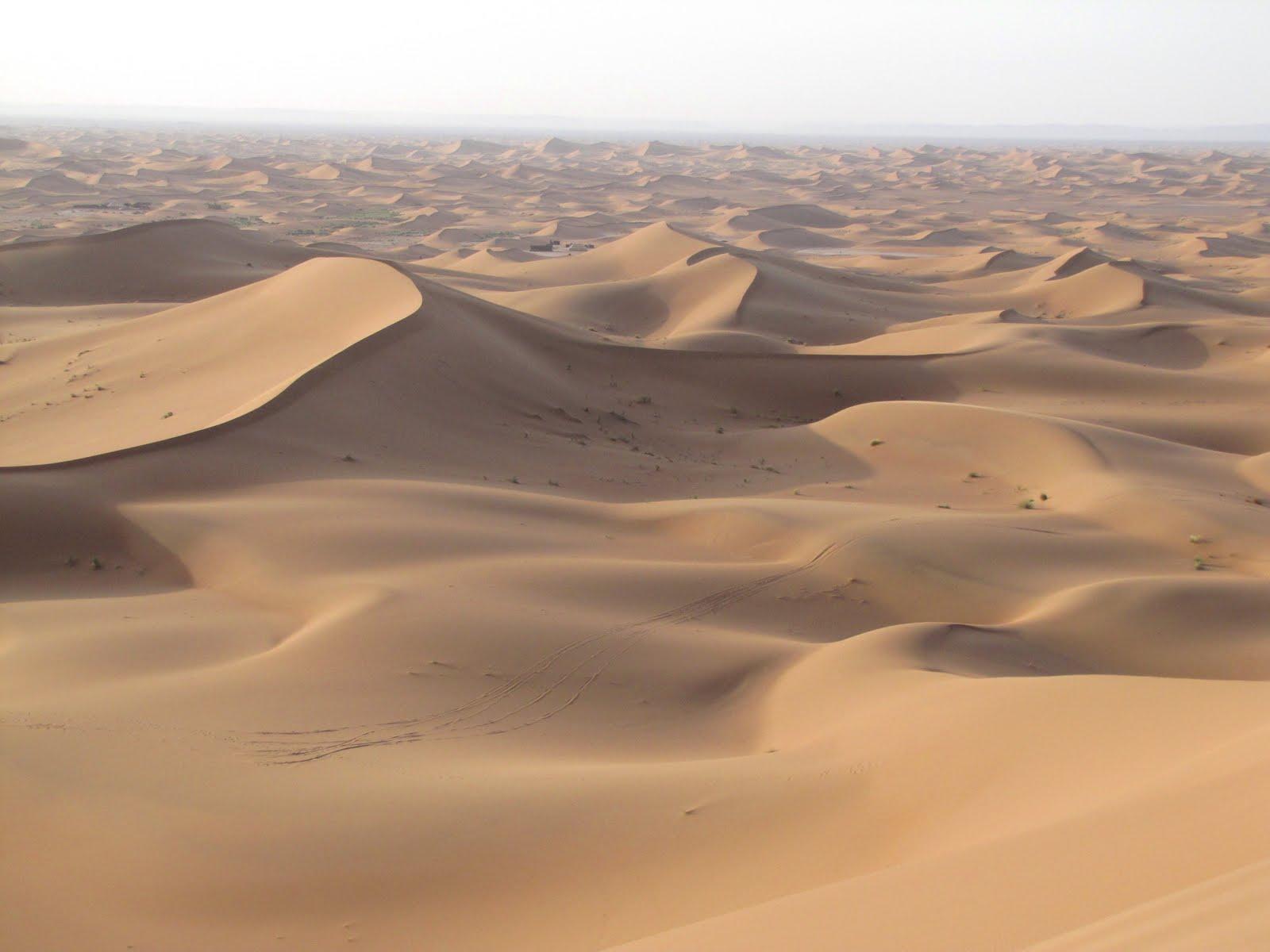 Sand Dunes Erg Chigaga  These sand dune